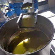 tokara olijfolie